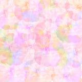 Arco-íris macio rosas coloridas Fotos de Stock Royalty Free