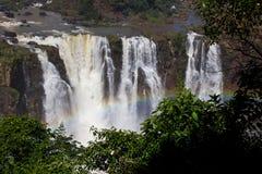 Arco-íris na cachoeira Argentina/Ámérica do Sul de Iguazu imagem de stock