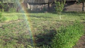 Arco-íris na cama do jardim 4K filme