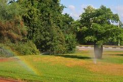 Arco-íris no gramado imagens de stock