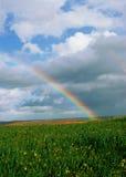 Arco-íris sobre campos das videiras e de campos de trigo verdes Foto de Stock