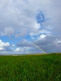 Arco-íris sobre campos das videiras e de campos de trigo verdes Fotografia de Stock Royalty Free