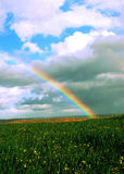 Arco-íris sobre campos das videiras e de campos de trigo verdes Imagem de Stock Royalty Free