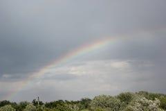 Arco-íris sobre a floresta Foto de Stock Royalty Free