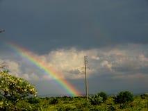 Arco-íris sobre o vinhedo crimeano imagem de stock