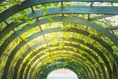 Arco artificial escénico en parque Fotografía de archivo