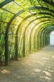Arco artificial escénico en parque Foto de archivo libre de regalías