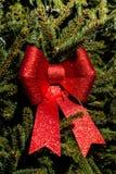 Arco brillante rojo en el árbol de navidad imagenes de archivo