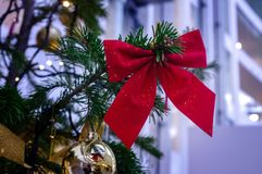 Arco chispeante rojo en el árbol Fotos de archivo