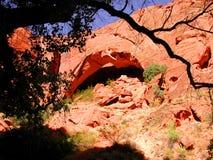 Arco con la siluetta dell'albero immagini stock