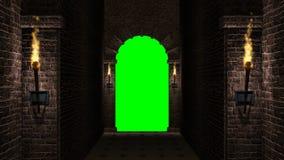 Arco con lo schermo verde stock footage