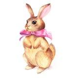 Arco d'annata di rosa del coniglio Fotografia Stock Libera da Diritti