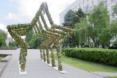 Arco da flor sob a forma de uma estrela Fotografia de Stock Royalty Free
