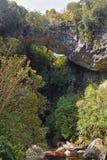 Arco da pedra calcária da bacia de Oparara sobre o rio, Nova Zelândia Imagem de Stock