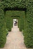 Arco das folhas fotografia de stock royalty free