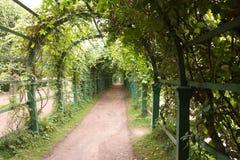 Arco de árboles Imagen de archivo libre de regalías