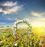 Arco de la boda adornado con las flores de las rosas blancas en el campo de la puesta del sol Imagen de archivo libre de regalías