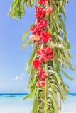 Arco de la boda adornado con las palmeras y las flores encendido Foto de archivo