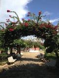 Arco de la flor en ciudad Imagenes de archivo