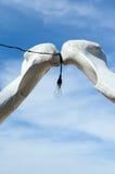 Arco de los huesos de la costilla de los pescados con la lámpara Foto de archivo libre de regalías
