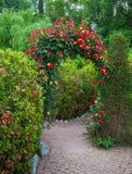 Arco de Rosa no jardim inglês do país Fotos de Stock Royalty Free
