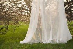 Arco decorativo di nozze intorno ad un albero di fioritura Fotografie Stock Libere da Diritti