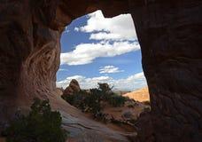 Arco del árbol de pino, arcos parque nacional, Utah, los E.E.U.U. Imagenes de archivo