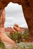 Arco del árbol de pino, Utah, los E.E.U.U. Fotos de archivo
