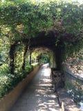 Arco del fiore Immagini Stock