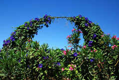 Arco del giardino fotografia stock