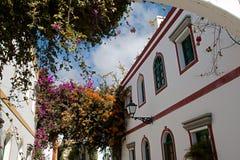 Arco del giardino con i fiori Fotografia Stock