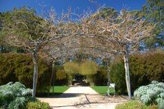 Arco del jardín fotografía de archivo