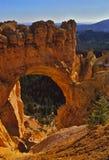 Arco del ponticello del canyon di Bryce Fotografie Stock
