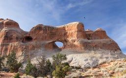 Arco del tunnel fotografia stock