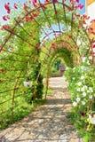 Arco do verão coberto pela videira fotografia de stock
