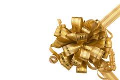 Arco dorato Fotografia Stock