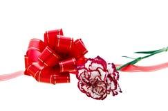 Arco e garofano rossi Fotografia Stock