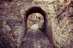 Arco e percorso di pietra Immagine Stock