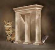 Arco impossibile con il gatto ed il ratto Immagini Stock Libere da Diritti