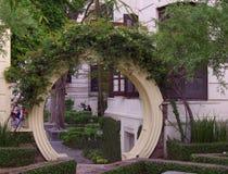 Arco invaso del verde Immagine Stock