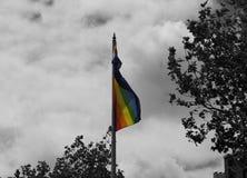 Arco iris colorido Pride Flag con el fondo blanco y negro Fotografía de archivo libre de regalías