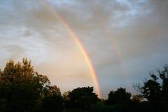 Arco iris con los árboles Imagen de archivo libre de regalías
