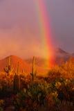 Arco iris del desierto fotografía de archivo libre de regalías