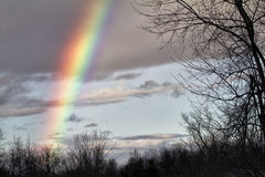Arco iris del invierno Fotos de archivo libres de regalías
