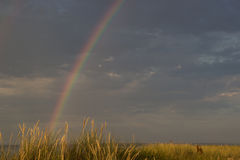 Arco iris en la costa Imágenes de archivo libres de regalías