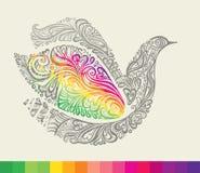 Arco iris en las alas de una paloma. Foto de archivo
