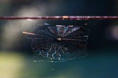 Arco iris en un spiderweb Imagenes de archivo
