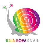 Caracol del arco iris. Foto de archivo