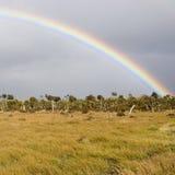 Arco iris patagón imágenes de archivo libres de regalías