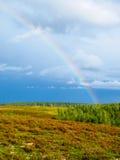 Arco iris sobre el paisaje boscoso debajo del cielo tempestuoso imágenes de archivo libres de regalías
